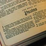 IMG_2931.2011.bible_.blog_